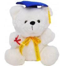 """Teddy Bear – 12"""" Graduation Bear"""