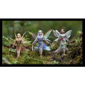 Flitter Fairies 3 Pack - Daria, Eva & Alexa