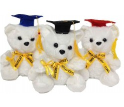 "Teddy Bear – 9"" Graduation Bear"