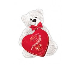 Valentine's Day Teddy Bear and Chocolate
