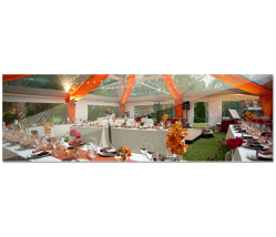 Wedding Planner Social Events Planning Packages